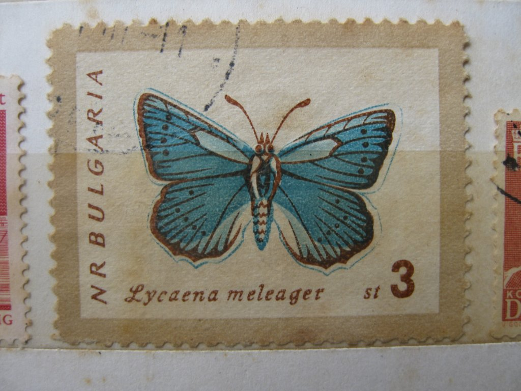 Size 2.3 MB, see if it works, Bulgaria butterfly stamp