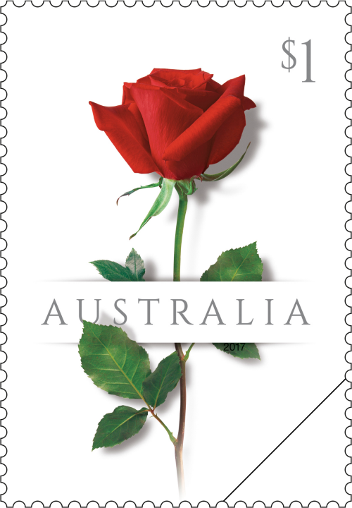 2017 Australia Stamp Love Issue - $1 Single Red Rose SG 4679