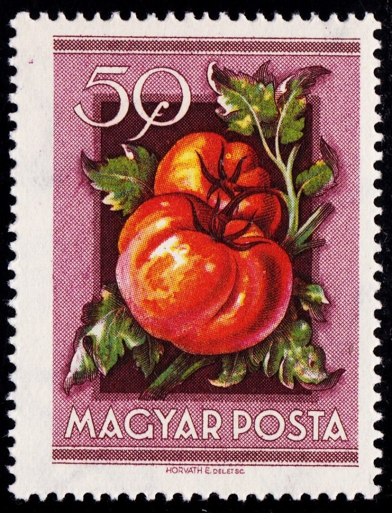 Hungary 1953 Fruits 21024.jpg
