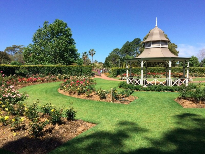 Wollongong Rose Garden.
