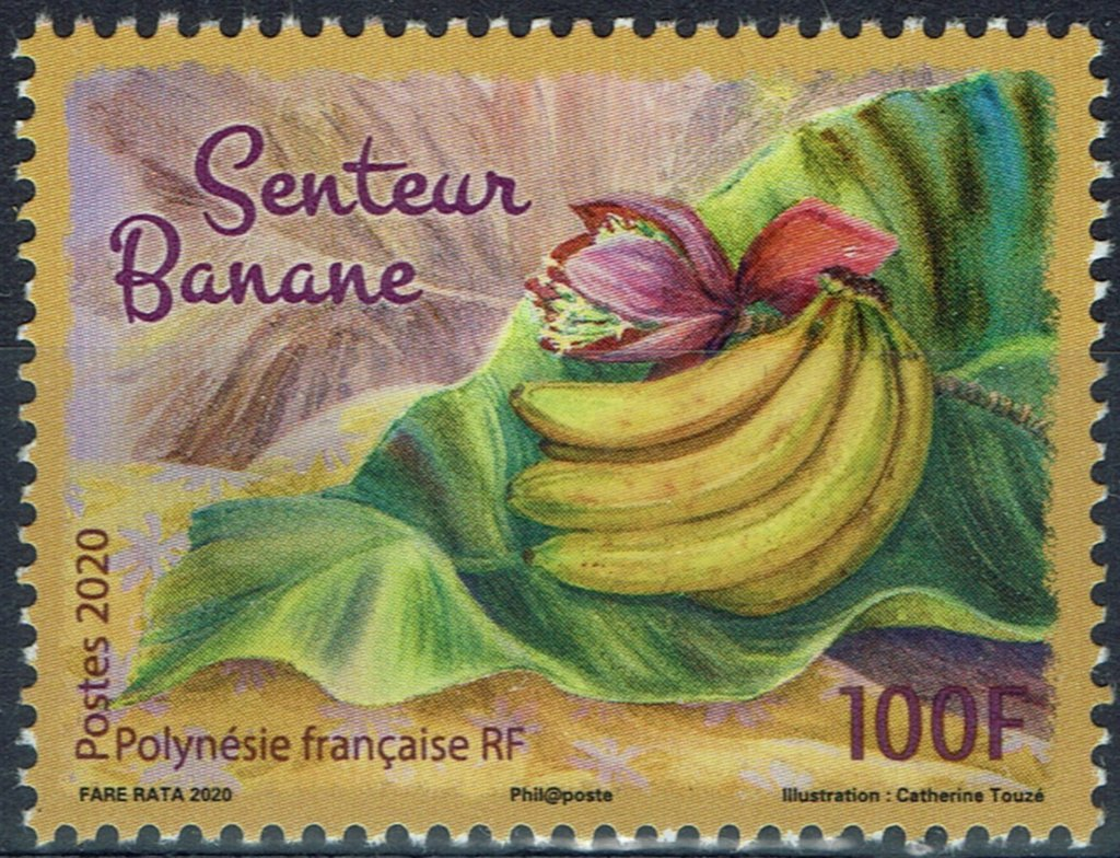 The-Scent-of-Banana French Polynesia.jpg
